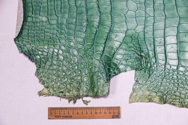 Кожа крокодила, светло-бирюзовая- kr-363