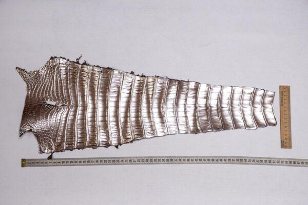 Кожа крокодила, светло-коричневая с перламутром, 61х23 см.- kr-373