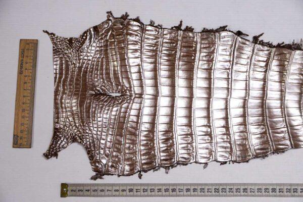 Кожа крокодила, светло-коричневая с перламутром, 67х22 см.- kr-374