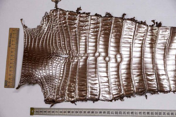 Кожа крокодила, светло-коричневая с перламутром, 82х24 см.- kr-375