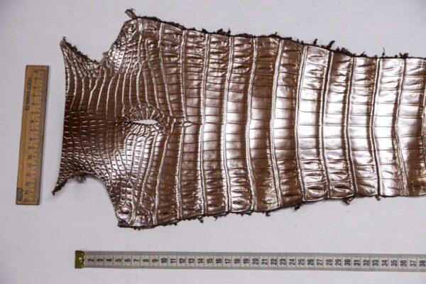 Кожа крокодила, светло-коричневая с перламутром, 76х23 см.- kr-376