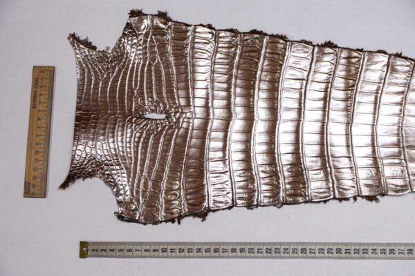 Кожа крокодила, светло-коричневая с перламутром, 82х24 см.- kr-377