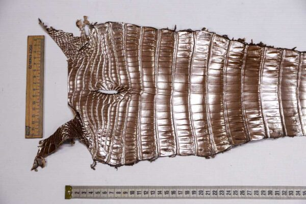 Кожа крокодила, светло-коричневая с перламутром, 68х21 см.- kr-381