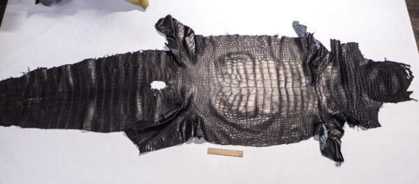 Кожа крокодила, черная, 214х57 см.- kr-383