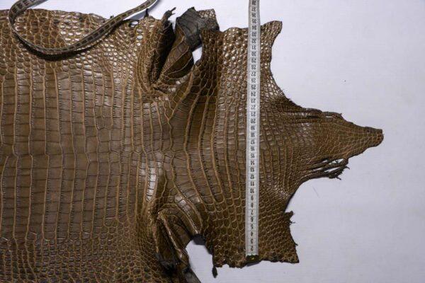 Кожа крокодила, хаки, 144х43 см.- kr-387