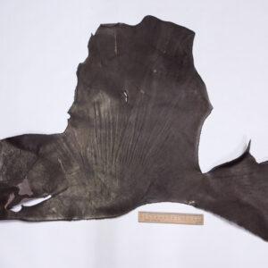 Кожа КРС краст, коричневый, 27 дм2.-1-589